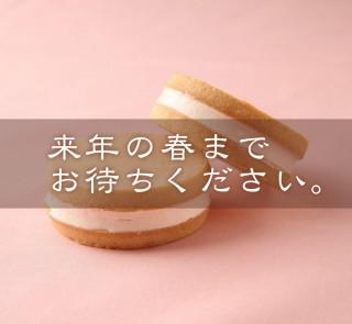 sakura_stop