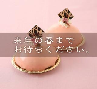 sakuramoose_stop